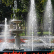 Fountain in city park with red flowers — Stock Photo