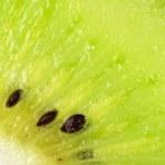 Kiwi slice isolated on white — Stock Photo