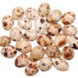 Royalty-Free Stock Photo: Photo of the quail egg