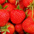 Background from strawberry — Stock Photo #12119626