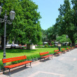 Summer day in city park — Foto Stock