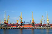 View on trading port with cranes — Stock Photo