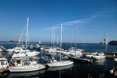 Harbour with many white yachts — Stock Photo
