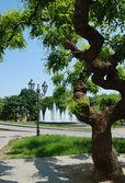 Parque de la ciudad con una fuente — Foto de Stock