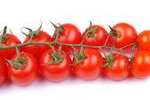 Cherry tomatoes on white background — Stock Photo