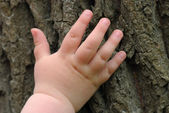Children's hand is located on an old stump — Stock Photo