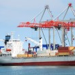 The trading seaport with cranes, cargoes and ship — Stock Photo #12120028
