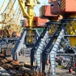 The trading seaport with cranes and ships — Stock Photo #12120124