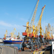 Port warehouse with cargoes and containers - Stock fotografie