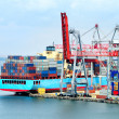 The trading seaport with cranes, cargoes and ship — Stock Photo #12120158