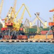 The trading seaport with cranes, cargoes and ship — Stock Photo #12120342