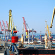 The trading seaport with cranes, cargoes and ship — Stock Photo #12120530