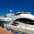 White yachts on anchor — Stock Photo #12120671