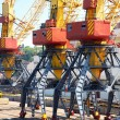 The trading seaport with cranes — Stock Photo