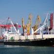 The trading seaport with cranes, cargoes and ship — Stock Photo #12120731