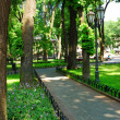 Summer day in city park — ストック写真