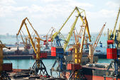 The trading seaport with cranes and ships — Stock Photo