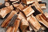 Dump of the fire wood — Stock Photo