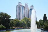 Parco cittadino con una fontana alta — Foto Stock