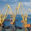 Trade port and cranes — Stock Photo