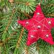 Christmas tree decoration red star — Stock Photo
