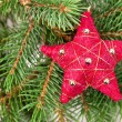Royalty-Free Stock Photo: Christmas tree decoration red star