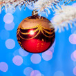 Christmas ball on fir tree branch — 图库照片