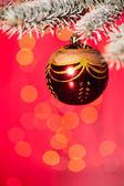 Christmas ball on fir tree branch — Stock Photo