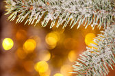 Fir tree branch with snow on golden bokeh background — Stock Photo