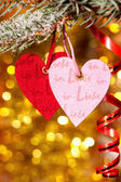 Two hearts on christmas fir tree branch — Stock Photo