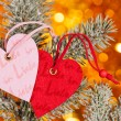 Two hearts on christmas fir tree branch — Foto Stock