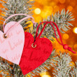 Two hearts on christmas fir tree branch — Zdjęcie stockowe