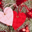 Two hearts on christmas fir tree branch — ストック写真