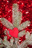 Cuore sul ramo di albero di natale abete — Foto Stock