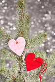 Two hearts on fir tree branch — Stock Photo