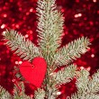 Heart on christmas fir tree branch - Stockfoto