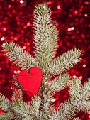 Heart on christmas fir tree branch — Stock Photo