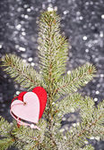 Hearts on fir tree branch — Stock Photo
