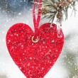 Heart at snow on tree - Stockfoto