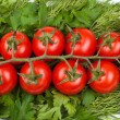 Cherry tomatoes on greens — Stock Photo