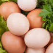 Foto de Stock  : Egg with greens