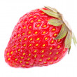 One strawberry macro photo isolated - Stock Photo