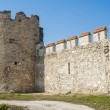 Fortress wall — Stock Photo #21188565