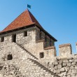 Ancient astle — Stock Photo #21673417