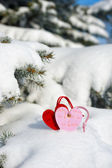 Two heart at snow on fir tree — Stock Photo