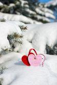 Deux cœur à neige sur le sapin — Photo