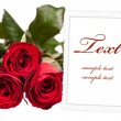 Empty photo frame with bouquet of roses — Стоковая фотография