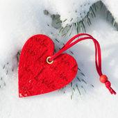 Heart at snow on fir tree — Stock Photo