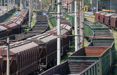 The cargo train with cars — Stock Photo
