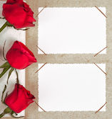 Photo album with frames and roses — Stock Photo